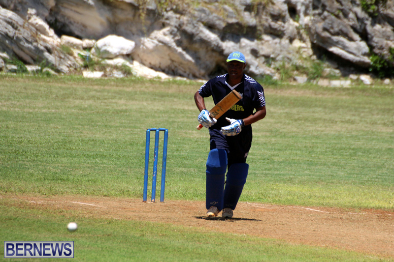 Cricket-Bermuda-August-2016-171