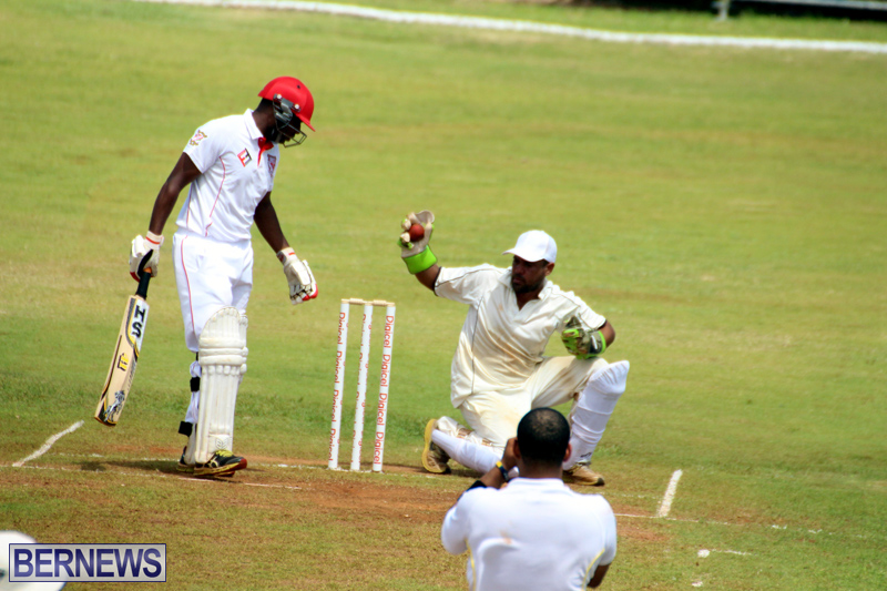 Cricket-Bermuda-August-2016-26