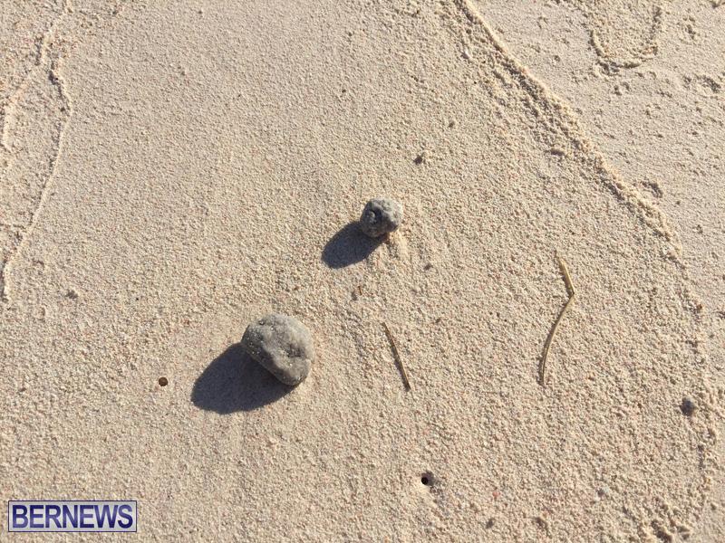 Grease Balls On Grape Bay Beach