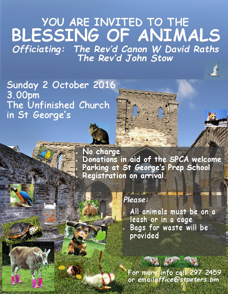 Animal Blessing Bermuda Sept 15 2016