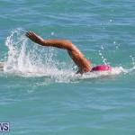 Bermuda National Open Water Championships, September 25 2016-1