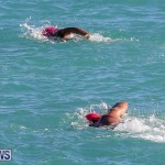 Bermuda National Open Water Championships, September 25 2016-15