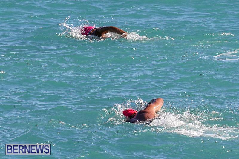 Bermuda-National-Open-Water-Championships-September-25-2016-15