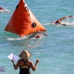 Bermuda National Open Water Championships, September 25 2016-18