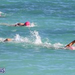 Bermuda National Open Water Championships, September 25 2016-2