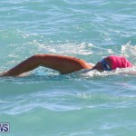Bermuda National Open Water Championships, September 25 2016-22