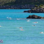 Bermuda National Open Water Championships, September 25 2016-24