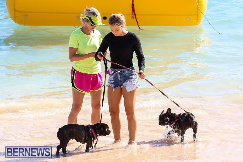 Bermuda-National-Open-Water-Championships-September-25-2016-25