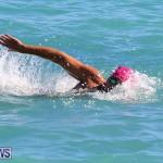 Bermuda National Open Water Championships, September 25 2016-29