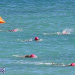 Bermuda National Open Water Championships, September 25 2016-4