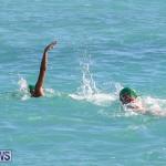 Bermuda National Open Water Championships, September 25 2016-53