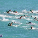 Bermuda National Open Water Championships, September 25 2016-57