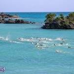 Bermuda National Open Water Championships, September 25 2016-59