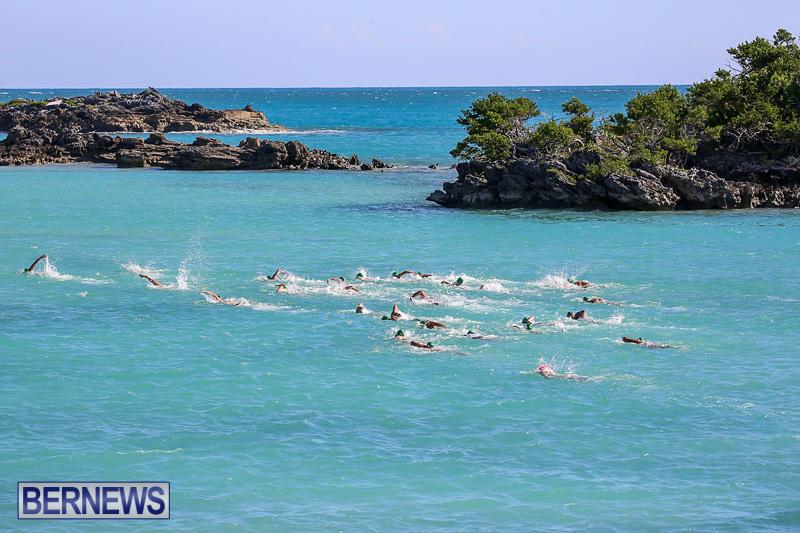 Bermuda-National-Open-Water-Championships-September-25-2016-59