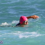 Bermuda National Open Water Championships, September 25 2016-6