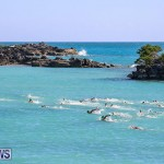 Bermuda National Open Water Championships, September 25 2016-60
