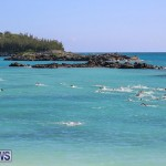 Bermuda National Open Water Championships, September 25 2016-61