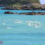 Bermuda National Open Water Championships, September 25 2016-66