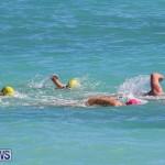 Bermuda National Open Water Championships, September 25 2016-81