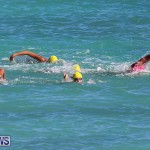 Bermuda National Open Water Championships, September 25 2016-86