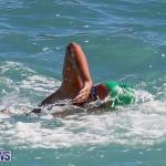 Bermuda National Open Water Championships, September 25 2016-88