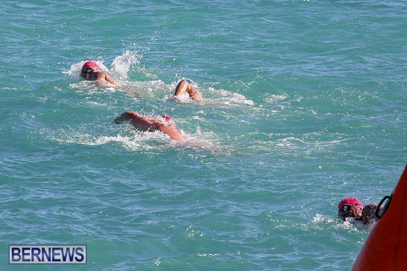 Bermuda-National-Open-Water-Championships-September-25-2016-9
