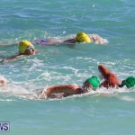 Bermuda National Open Water Championships, September 25 2016-94