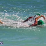 Bermuda National Open Water Championships, September 25 2016-95