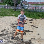 EY Coastal Clean-Up Bermuda, September 17 2016-10
