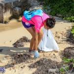 EY Coastal Clean-Up Bermuda, September 17 2016-11