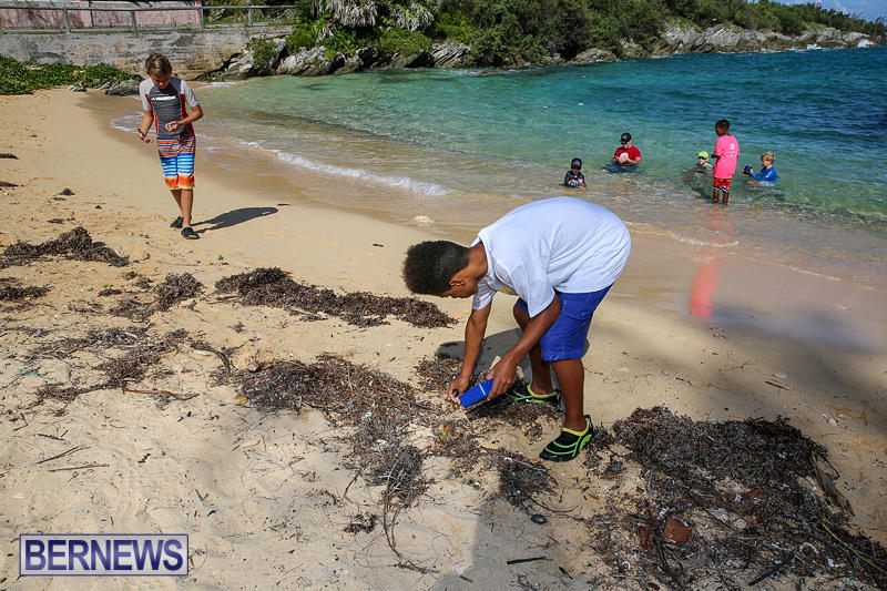 EY-Coastal-Clean-Up-Bermuda-September-17-2016-13