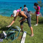 EY Coastal Clean-Up Bermuda, September 17 2016-20