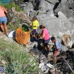 EY Coastal Clean-Up Bermuda, September 17 2016-24