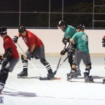 Inline Ball Hockey Bermuda August 31 2016 1