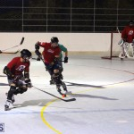 Inline Ball Hockey Bermuda August 31 2016 2