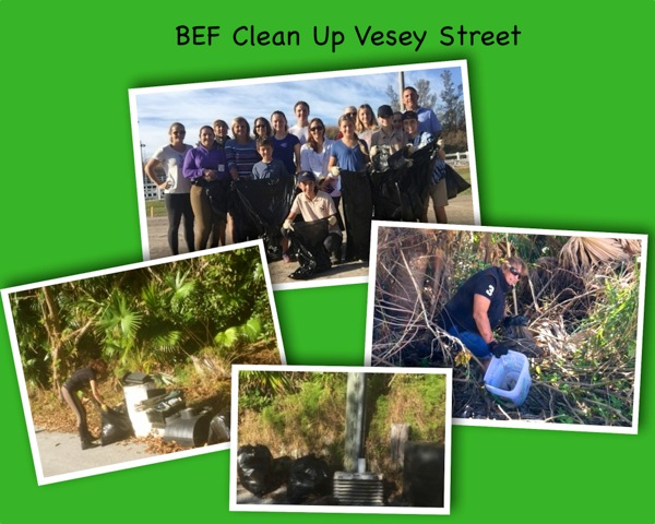 BEF Clean Up Vesey Street Bermuda October 2016