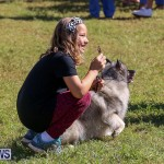 Bermuda Kennel Club Dog Show, October 23 2016-24