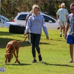Bermuda Kennel Club Dog Show, October 23 2016-87