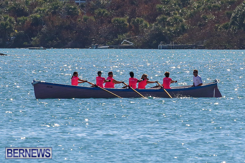 Bermuda-Pilot-Gig-Club-Gig-Regatta-October-29-2016-10