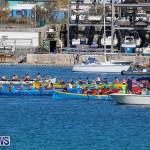 Bermuda Pilot Gig Club - Gig Regatta, October 29 2016-2