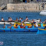 Bermuda Pilot Gig Club - Gig Regatta, October 29 2016-3