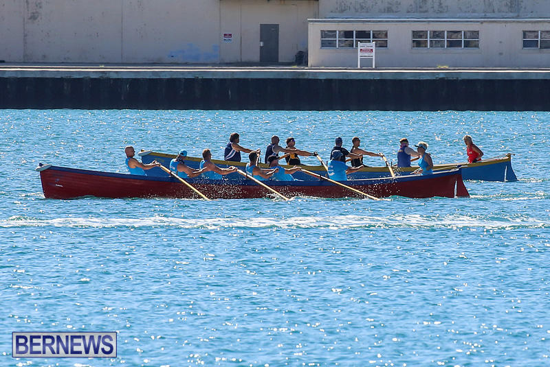 Bermuda-Pilot-Gig-Club-Gig-Regatta-October-29-2016-56