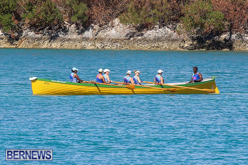 Bermuda-Pilot-Gig-Club-Gig-Regatta-October-29-2016-61