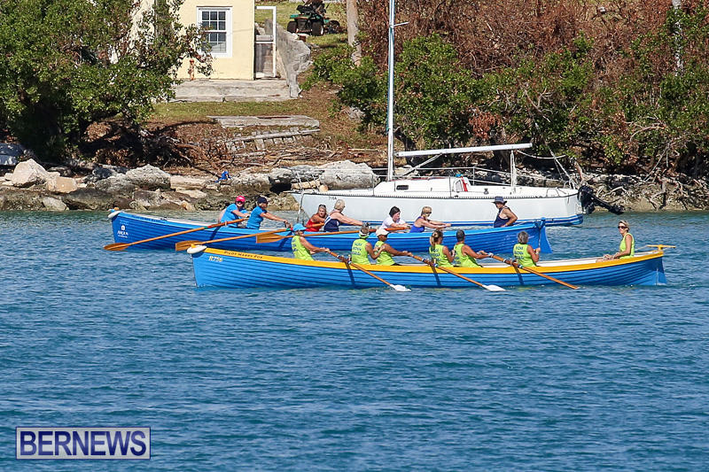 Bermuda-Pilot-Gig-Club-Gig-Regatta-October-29-2016-64