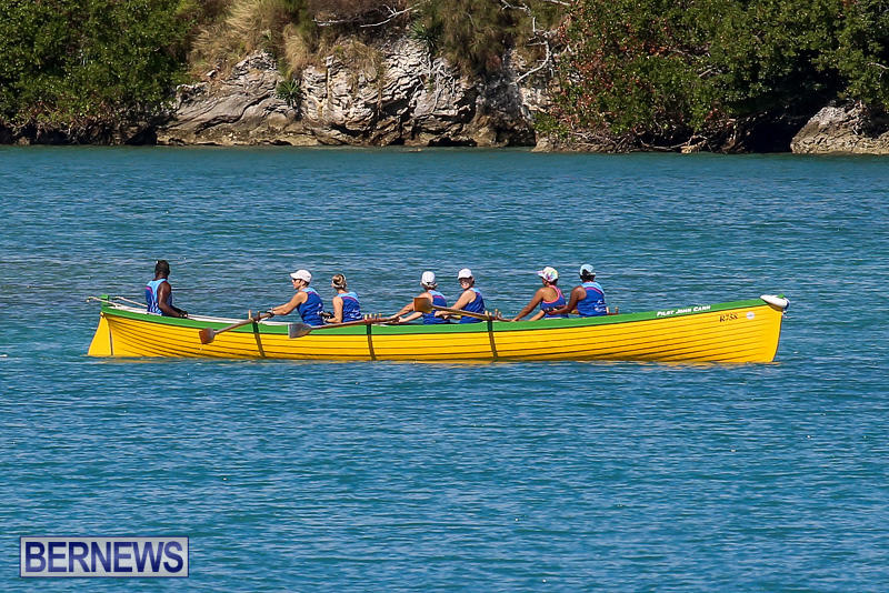 Bermuda-Pilot-Gig-Club-Gig-Regatta-October-29-2016-68
