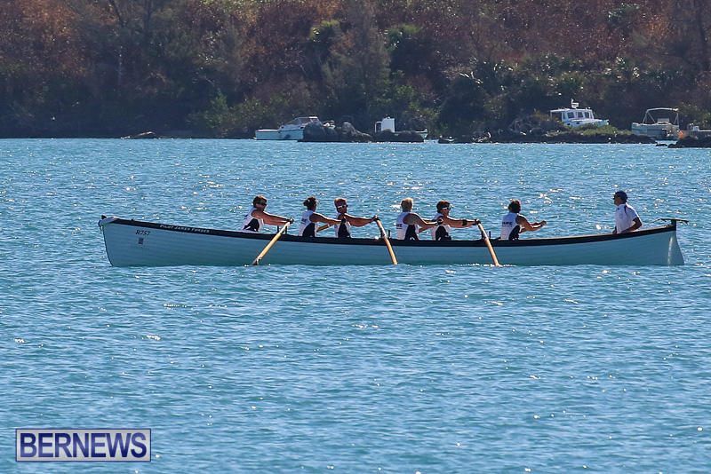 Bermuda-Pilot-Gig-Club-Gig-Regatta-October-29-2016-7