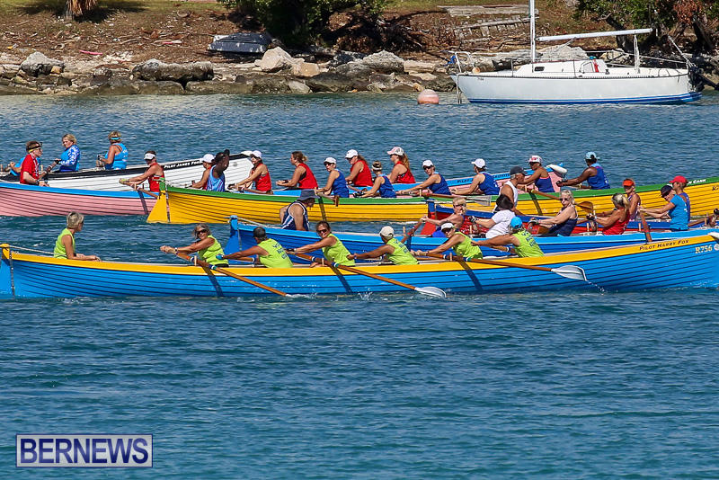 Bermuda-Pilot-Gig-Club-Gig-Regatta-October-29-2016-79