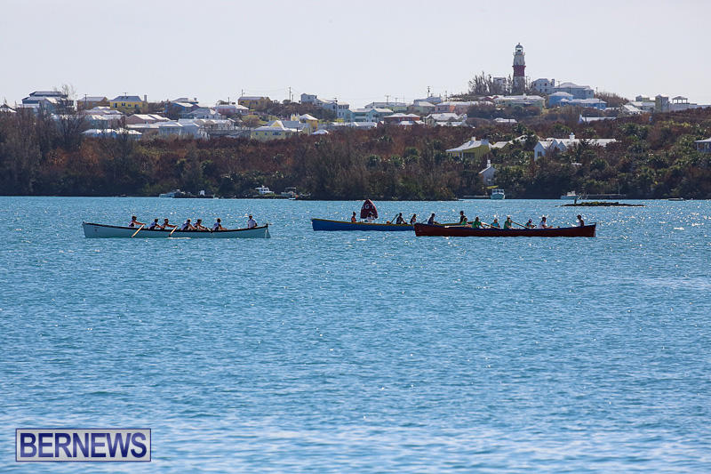 Bermuda-Pilot-Gig-Club-Gig-Regatta-October-29-2016-8