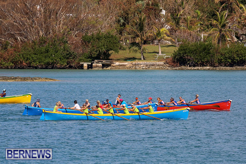 Bermuda-Pilot-Gig-Club-Gig-Regatta-October-29-2016-81