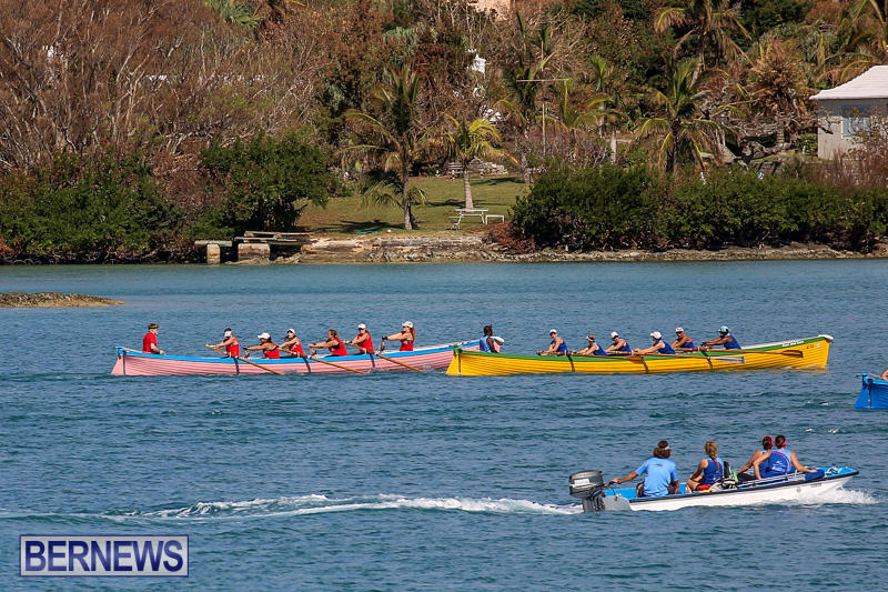 Bermuda-Pilot-Gig-Club-Gig-Regatta-October-29-2016-84